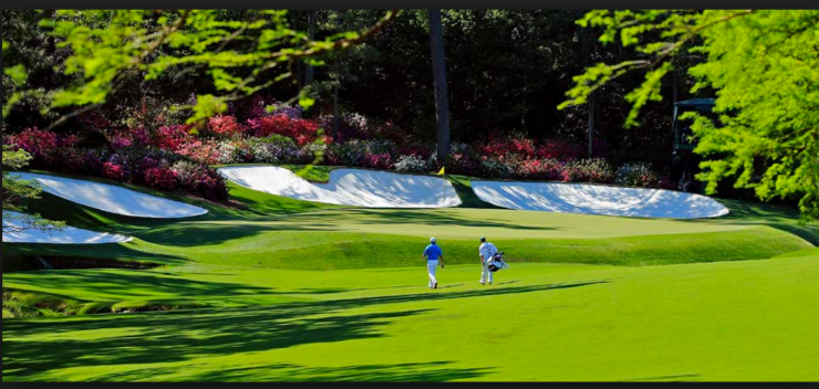 Image result for augusta national