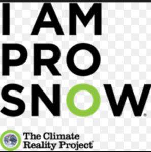 Pro Snow