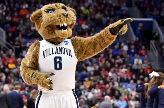 Villanova Wildcat